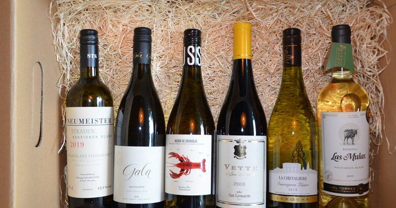 Wine box Svetové Sauvignony 2