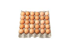 Vajcia L 30ks/bal